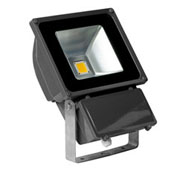 ዱካ dmx ብርሃን,የ LED መብራት,የ PAR ተራሮች 4, 80W-Led-Flood-Light, ካራንተር ዓለም አቀፍ ኃ.የተ.የግ.ማ.